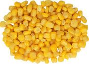 Купим кукурузу,  пшеницу,  ячмень,  сою,  жмых